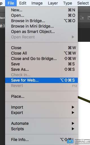Images Optimized For Web - Save For Web Option